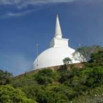 仏教伝来の地 ミヒンターレ