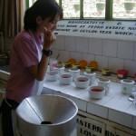 mitsu-tasting