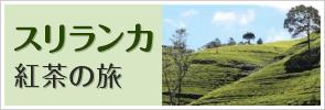 スリランカ 紅茶の旅