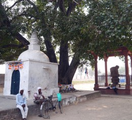 サンカシャ遺跡 右手にアショーカ王柱 左手にレリーフを安置する小堂
