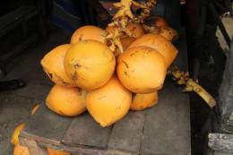 25 キングココナッツ